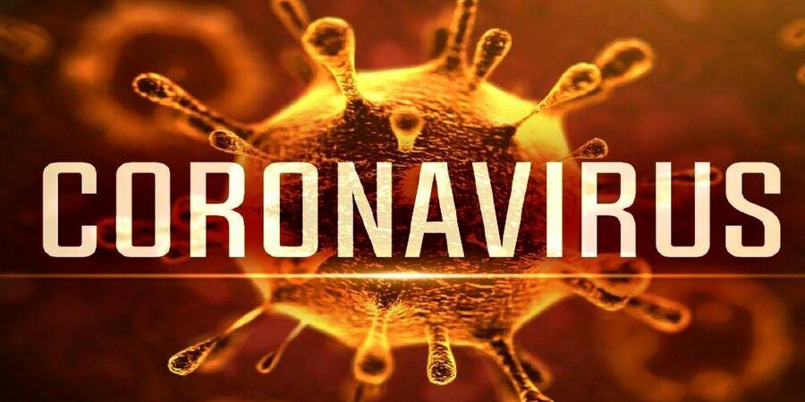پیش بینی جدید درباره ویروس کرونا