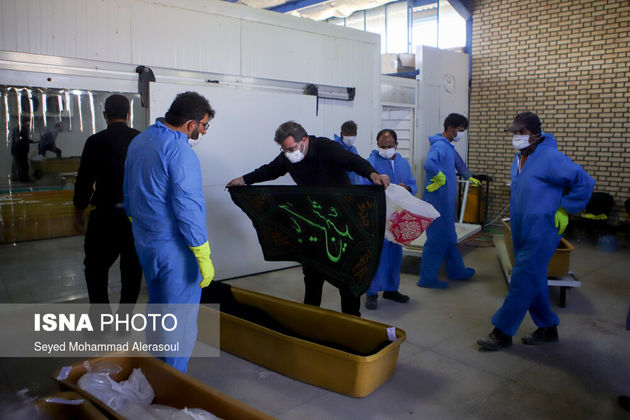 62003049_Seyed-Mohammad-Alerasoul-1-of-55-
