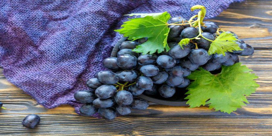 مفید ترین انگور، این رنگ انگور است