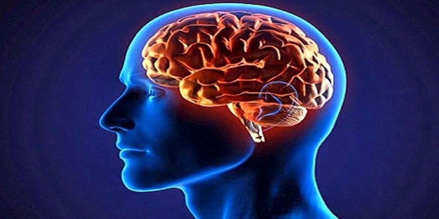 شیوع بیماری که حافظهتان را به سرعت نابود میکند