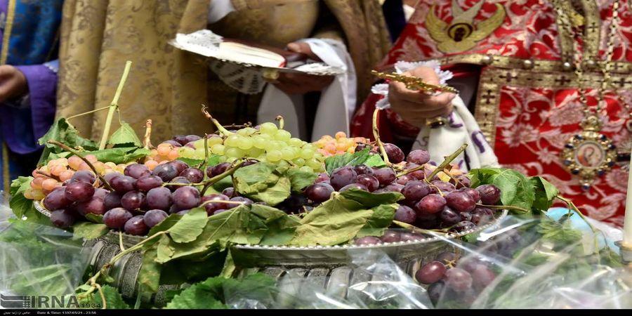 خواص درمانی  مهم انگور سیاه