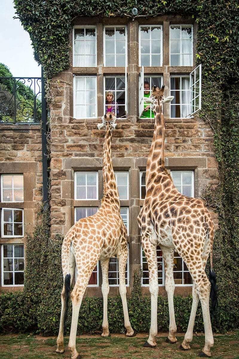 با هتل های شگفت انگیز در سراسر دنیا آشنا شوید + عکس