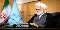 پیام تسلیت محسنی اژهای در پی درگذشت نوجوان فداکار ایذهای