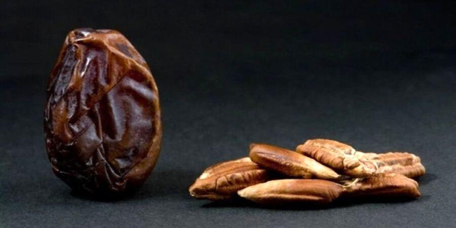 خواص درمانی هسته خرما برای قند خون