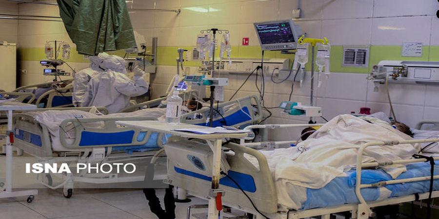 سقوط شدید تعداد ابتلای روزانه کرونا در کشور/ مرگ 355 نفر در 24 ساعت گذشته