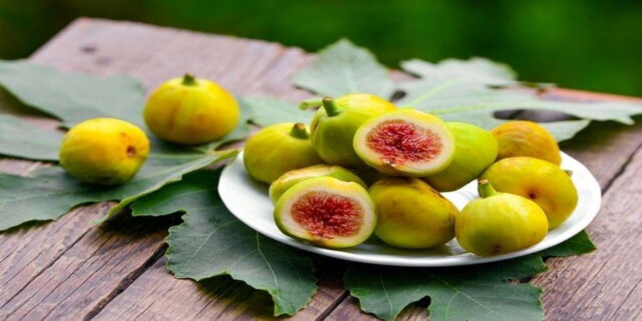 این میوه هم تب بر است هم از بدن سم زدایی می کند